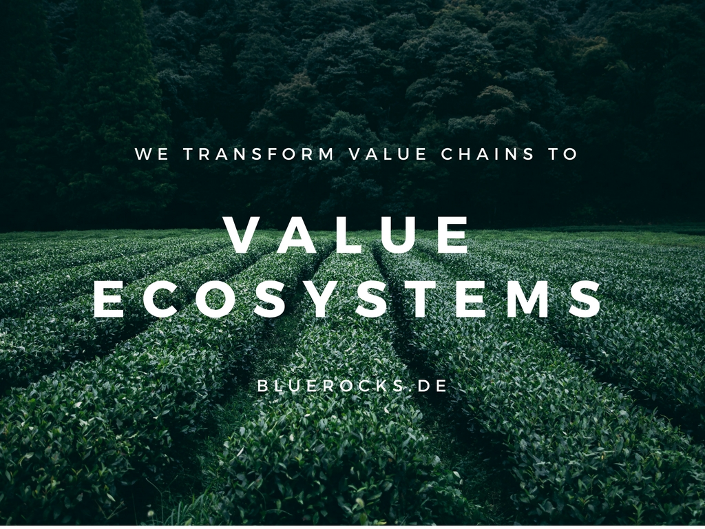 Design Your Value Ecosystem by BlueRocks.de