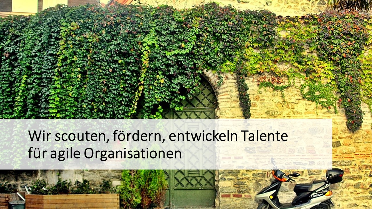 talent development agile organisationen